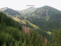 Dolina Goryczkowa