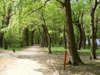 Zespół parków kołobrzeskich