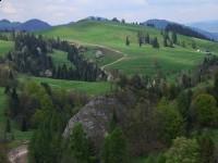 Pieszy szlak turystyczny - szlak do schroniska na Bereśniku