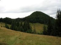 Pieszy szlak turystyczny - szlak na Wysoką przez Wąwóz Homole
