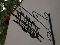 Muzeum Ślężańskie im. Stanisława Dunajewskiego w Sobótce
