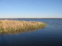 Jezioro Resko Przymorskie