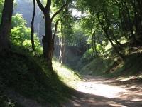 Nadmorski Park Krajobrazowy