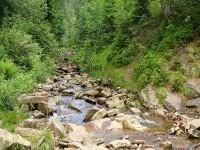 Rezerwat przyrody Wisełka