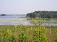 Rezerwat Siedmiu Wysp Jeziora Oświn