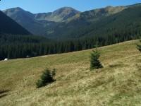 Dolina Chochołowska Wyżnia
