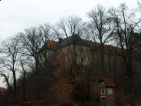 Zamek Niemcza